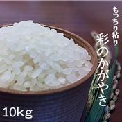 一等米!新米 彩のかがやき10kg(白米の場合9kg) 玄米10kg、白米、分つき米9kg、無洗米8.5kg 果物や野菜などのお取り寄せ宅配食材通販産地直送アウル