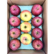 ちょっと小ぶりだけど美味しいりんごの詰め合わせ 3kg 群馬県 通販