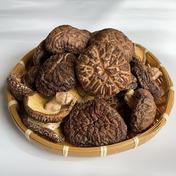 在庫処分セール 島根県産 原木乾椎茸 (中香信)150g  本年春子新物 150g×5袋 野菜(きのこ) 通販