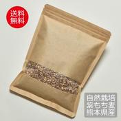希少!自然栽培紫もち麦 500g✖️2パック 熊本県産 送料無料! 500g✖️2パック その他 通販