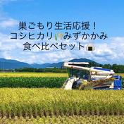 高島農産(ないとうさん家の野菜) コロナに負けるな!巣ごもり生活応援 お家で楽しむお米食べ比べセット 玄米各3kg リサイクル箱発送
