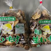 干し椎茸丸干し100g 2個 野菜(野菜の加工品) 通販
