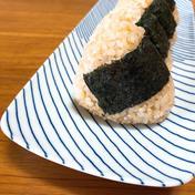 【新米】令和3年産:農薬も肥料もサヨナラ米。甘さが絶品食べやすい玄米!ミルキークイーン! 2K玄米 米(玄米) 通販