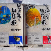 新米 千葉米おすすめ食べ比べセット 白米10kg 5kg×2 千葉県 通販