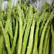 今季もうすぐ終了いたします。【訳ありです!!】アスパラ「さぬきのめざめ」選別なし、サイズ不揃い1kg!+おまけ200g サイズ不揃い1kg!+おまけ200g 果物や野菜などのお取り寄せ宅配食材通販産地直送アウル