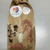 米どころの土地の人気新品種だて正夢、送料無料でお届けします 5kg ほうちゃんネットショップ