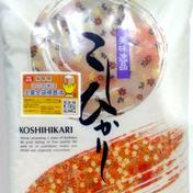 新米!精米コシヒカリ25kg(当日発送) 25kg 果物や野菜などのお取り寄せ宅配食材通販産地直送アウル