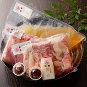 【地鶏もつ鍋‼】 極上地鶏清湯‼ 地鶏塩もつ鍋セット2~3人前! 地鶏もつMIX300g×2・地鶏清湯スープ1kg・地鶏香脂30ml・たまりにんにくスラ 肉 通販