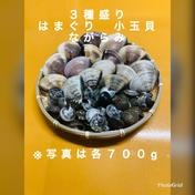 治吉水産 3種盛り はまぐり 小玉貝 ながらみ 各700g入り 約2.1キロ