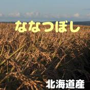 【新米】 ななつぼし 北海道産 10kg 精米 10kg 米 通販