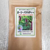 ホーリーバジルティー 2g×10袋入 2g×10袋 お茶(ハーブティー) 通販