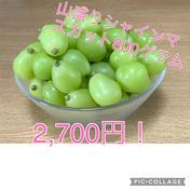 摘み落としシャインマスカット 800g 果物(ぶどう) 通販