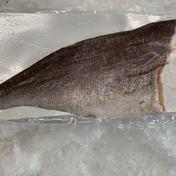 【冷凍】メダイフィーレ(加熱用)真空 1枚入り 1袋/約1.3kg~1.8kg 鹿児島県 通販