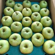 家庭用 トキりんご 食べ切りサイズ 箱込み5キロ 果物や野菜などのお取り寄せ宅配食材通販産地直送アウル