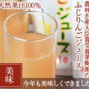 リンゴジュース20パック入り 20パック入り 飲料(ジュース) 通販
