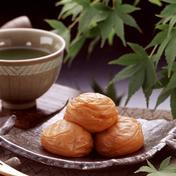 紀州南高梅 はちみつ梅500g 塩分10% 加工品(梅干) 通販