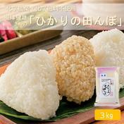【新米】令和3年産魚沼産コシヒカリ ひかりの田んぼ3kg 精米 3kg 米 通販