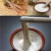 父の日に 自然薯1㎏ 1㎏(2〜3本) 神奈川県 通販