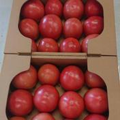 ひろちゃん野菜のトマト 約4キロ 果物や野菜などのお取り寄せ宅配食材通販産地直送アウル