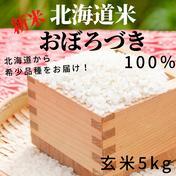 もっちりとした深い味わいのあるお米 令和3年産 北海道米おぼろづき 玄米5kg 玄米5kg 果物や野菜などのお取り寄せ宅配食材通販産地直送アウル