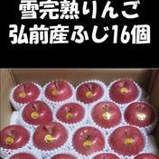 蜜入り雪完熟りんご最上級品5kg(16個入り) 5kg 果物 通販