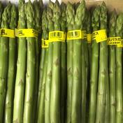 アスパラL級M級ミックス700g 700g 野菜(アスパラガス) 通販