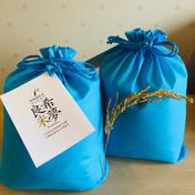 希夢良米 石川県産特別栽培米コシヒカリ    10キロ 10キロ 石川県 通販