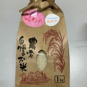 「おかえりモネ」の登米市よねやま町のひとめぼれ!期間限定品 5kg ほうちゃんネットショップ