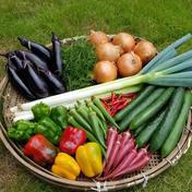 さくま農園「旬のお野菜おまかせセット」 約3.0~5.0㎏ 果物や野菜などのお取り寄せ宅配食材通販産地直送アウル