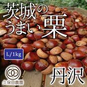茨城のうまい栗(丹沢) Lサイズ(約1kg/約50個) 約1Kg(Lサイズ/約50個) 果物や野菜などのお取り寄せ宅配食材通販産地直送アウル