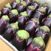 ブランド茄子【りんごあめ】十全茄子 16個入り 十全茄子 16個 2.6kg 新潟県 通販