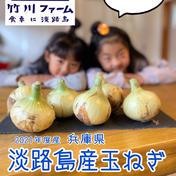 竹川ファームの淡路島産玉ねぎ 5キロ 野菜(玉ねぎ) 通販