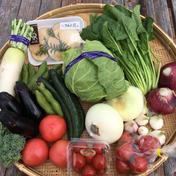 竜王産お米と野菜の詰め合わせセット お米3キロ(玄米時)精米してお届けします。野菜数種類(5種類程度) 道の駅アグリパーク竜王