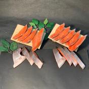 釧路の釣りもの時知らず切身と北洋育ちの紅鮭切身 時知らず;1パック(半身7切)/紅鮭;1パック(半身9切) 魚介類(鮭) 通販