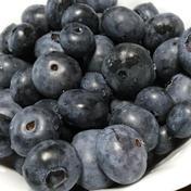 自然栽培のブルーベリー 500g 果物(その他果物) 通販