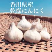噂の...香川県産✨乾燥にんにく✨ 箱込1kg 野菜(にんにく) 通販