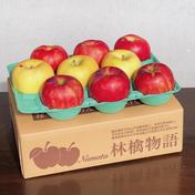 りんごお任せ詰め合わせ 3kg 果物(りんご) 通販