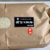 新米 産直のお米 福井ハナエチゼン5kg 5kg 果物や野菜などのお取り寄せ宅配食材通販産地直送アウル