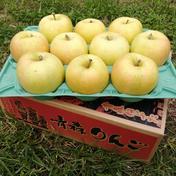 【青森県産】 トキ 3kg ご家庭用 3kg 青森県 通販