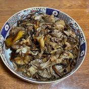 秋田の代表的なキノコ🍄 沢モタシの水煮袋詰め 500g 500g 果物や野菜などのお取り寄せ宅配食材通販産地直送アウル