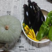 かぼちゃ★野菜セット🌟 5㎏以内 果物や野菜などのお取り寄せ宅配食材通販産地直送アウル