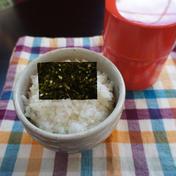 【お中元】子育てママの嬉しいがいっぱい!昨年15万枚以上販売の有明海産初摘み海苔「のりちゃん」(2セット) 魚介類(のり) 通販