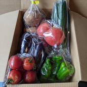 7月31日まで限定の値引【夏ギフト】お家ご飯応援 野菜と米セット 5キロ以内 果物や野菜などのお取り寄せ宅配食材通販産地直送アウル