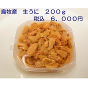 【送料無料クーポン b01a-0382】島牧産 生うに 200g 200g 魚介類 通販