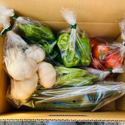 ニンニクとお任せ野菜のセット小(1〜2人用) 1.5kg前後 果物や野菜などのお取り寄せ宅配食材通販産地直送アウル