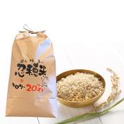 忍穂米 5キロ 米(米) 通販