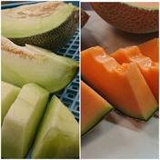 完熟メロンの赤青二色2個セット 3.5kg ~4.5kg  果物や野菜などのお取り寄せ宅配食材通販産地直送アウル