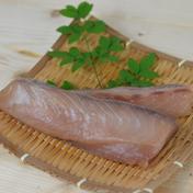 【簡単調理で即席おかず】獅子島産ブリの醤油漬け 500g 加工品(その他加工品) 通販
