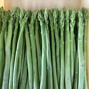 【正規品】朝採り博多アスパラガス 1kg 1kg 果物や野菜などのお取り寄せ宅配食材通販産地直送アウル