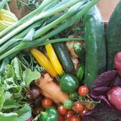 夏の美山の京やさいガチャ【6~7品目】 5キロ以下 80サイズ 果物や野菜などのお取り寄せ宅配食材通販産地直送アウル